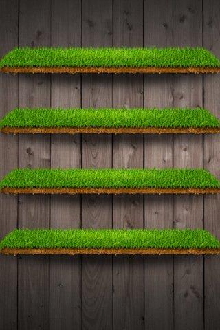iphone4wallpapergrassshelf.jpg